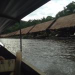 Photo of River Kwai Jungle View