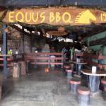 Coati Tours