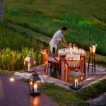 Discover the joy of Dining Beyond by a lush Rice Field. (146190469)