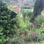 Hidden Valley Gardens Foto
