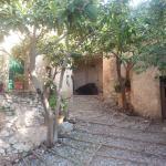 Bilde fra Agriturismo I Mandorli