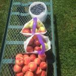 Pears, apples, blueberries!!