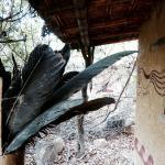 Foto de Chaparri EcoLodge