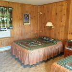 Clean, cute motel room with woodsy decor.