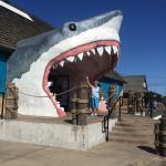 Foto de Ocean Shores Inn & Suites