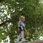 Our 7 year old up a tree