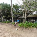 The beach front hamacs