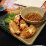 Gyoza! (fried dumplings)
