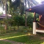 Villa chamade (numéro 1)  Jardin et piscine