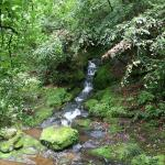 Geomnyongso Pond