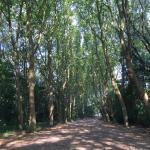 Park Malou
