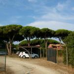 Photo of Camping Village Voltoncino