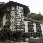 Photo of Hotel Hirsch