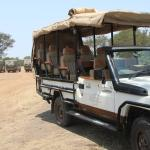 Best game drive vehicles we saw