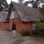 Photo of Feon' ny Ala