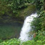 jolie cascade proche du Resort, sur le plateau des Bolovens