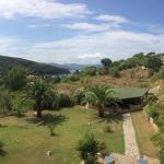 Photo de Hotel La Feluca