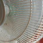 dirty fan