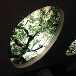 "Beautiful ""skylight"" fixtures in lobby."
