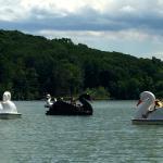Paddle Boating and Picnic Pavilion