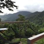 Sweet mountain hostel with great views and awesome wildlife interaction including Rocky the hone
