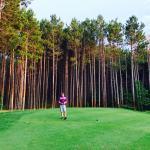 Outstanding pines