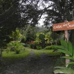 Osa Rainforest Rentals