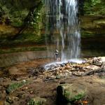 Tannery Falls Foto