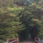 Huckleberry Trail Foto