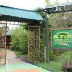 Entrada a Jacarandá