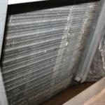 Mold in dirty HVAC system