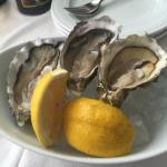 Delicious and fresh Oyster!