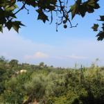Photo de Azienda Agricola San Gervasio