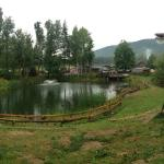 View on the pond and the restaurant