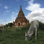 Фотография Храмы Пагана