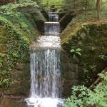 Wunderschöner romantischer Waldsee bei Anger. Ideal für Wanderungen und an vorgezeichneten Einst