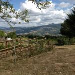 Photo of Agriturismo Forgione
