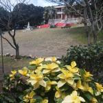 Photo of Bar Do Jacare