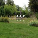 Vue du jardin et de la piscine naturelle