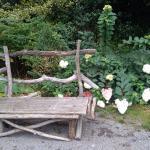 Photo de Les jardins de l'eau du Pré Curieux