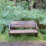 One of the benches in the park