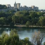 Looking across to Avignon