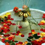 Fresh rose petals and the cooling fountain welcome you