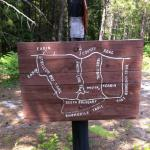 Miles upon miles of mountain bike trails