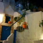 Particolare del giardino: la scala per il terrazzo
