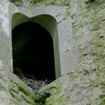 Ballinalacken Castle Foto