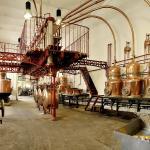 La salle des alambics (1901)