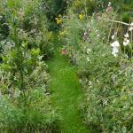 Le Jardin des Lianes