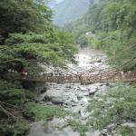 祖谷渓にかかるかづら橋です