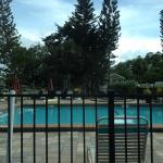 KOA Campground Naples,Marco Island,FL  pool
